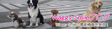 Waggy Smileブログ - Waggy Smileの最新情報を発信!